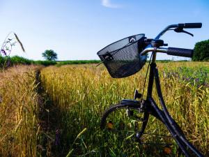 A Girl's Bike